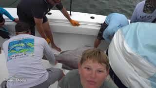 Team Jumbo Shrimp Sarasota Slam 2019 210-pound warsaw, 60-pound cubera & huge amberjack