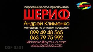 ШЕРИФ DSF 0301 2013 cam1