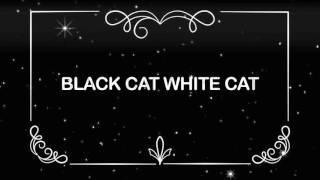 BLACK CAT WHITE CAT. 9 Wild Lovers - Album Teaser