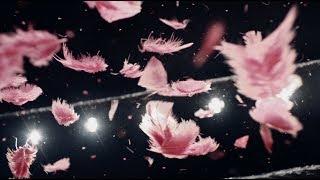 Kat Frankie - Bad Behaviour (official video)