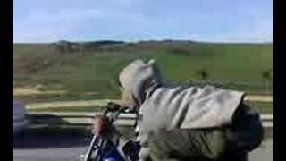 speed bike !!!  pijo 103 sp custom !!!