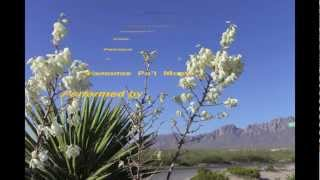 """""""Vamonos Pa'l Monte"""" : Let's Go to the Organ Mountains in New Mexico"""