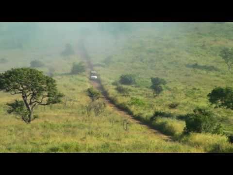 Permesco – South Africa – Kruger N.P. – Giraffe & Rhino