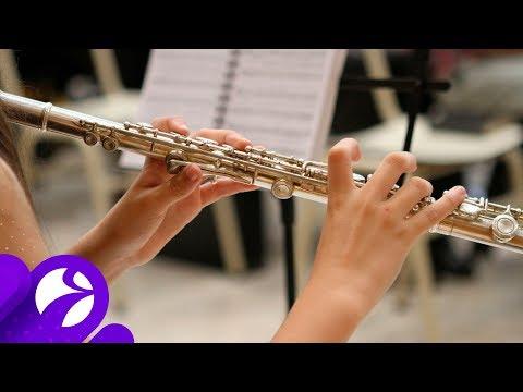 В ямальские школы искусств закупят новые музыкальные инструменты