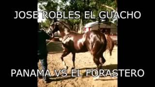 Jose Robles El Guacho - Panama Wes Vs El Forastero (Corrido Official de Caballos)