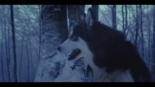 AMEL ĆURIĆ - Te zime (Teaser 4K)