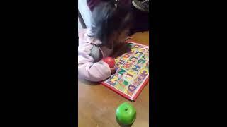 Niña prodigio: Tiara sorprende por lo que sabe a su edad (video)