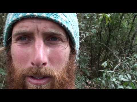 M.E.T.V. – Andrew's Trekking Guide to Nepal – Part 1
