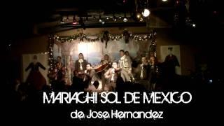SON DE LA NEGRA - MARIACHI SOL DE MEXICO