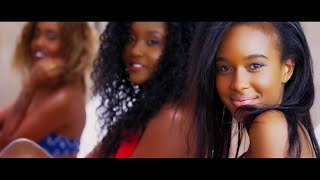Nonini ft Jegede-HiiNiYA (Official ProHabo Video 4K)