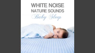Bird Sound, Nature Music Sleeping Songs