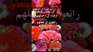2019 New year Shirine معايدة رأس السنة 2018/2019 لكل الأصدقاء والأحبة