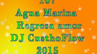 107 Agua Marina   Regresa amor DJ CusthoFlow 2015
