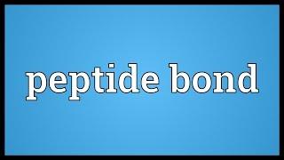 Peptide bond Meaning width=