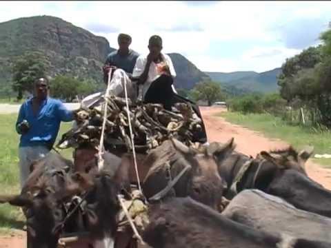 Seraki Blouberg Camp – Limpopo – South Africa