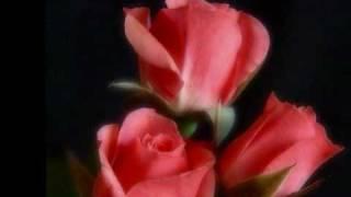 Alex  Rivera - Dime La Razon