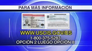 USCIS recibió más de 99% de permisos inválidos
