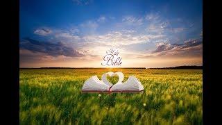 Matthew 1 | Bible Reading