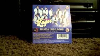 Banda Los Lagos: Funky Banda (Funky Town)