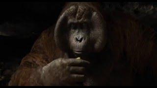 Mogli: O Menino Lobo - Rei Loiue - 14 de abril nos cinemas