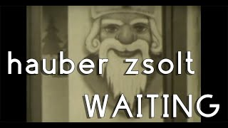 Hauber Zsolt - Waiting (official video) SD