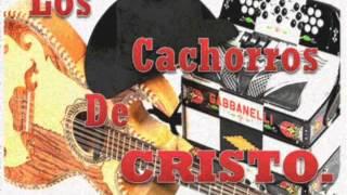 LOS CACHORROS DE CRISTO CRISTO LO TOCO