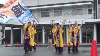 よさこい風神 南伊豆軽トラ市 2014/3/2 festivo