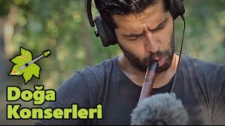DOĞA İÇİN ÇAL | Sinan Cem Eroğlu | Doğa Konserleri