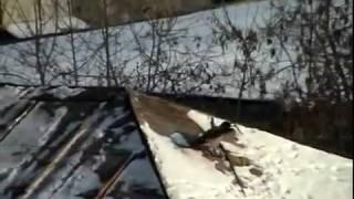 Corbeau qui fait de la luge (corbeau qui ski, corbeau qui surf)