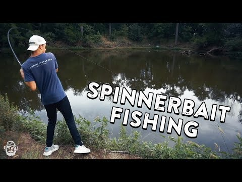 Spinnerbait Fishing Tips | Pond Bass Fishing with Finatic!