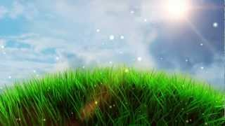 Free Worship Grass Field Background