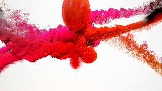Particle Intro Template #122 Sony Vegas Pro