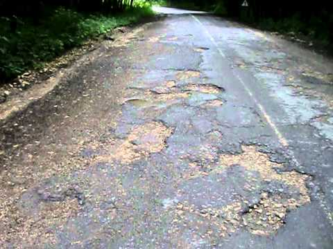 Road condition through beautiful forest.AVI