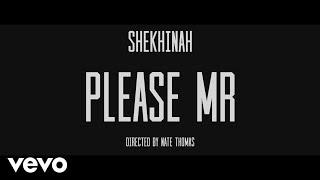 Shekhinah - Please Mr width=