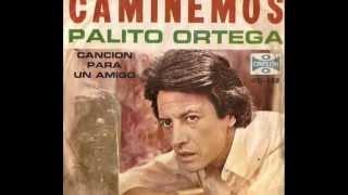 PALITO ORTEGA - Pasando una noche de farra.wmv