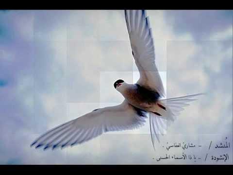 مشاري العفاسي - يا ذا الأسماء الحسنى ( يا خالقنا )