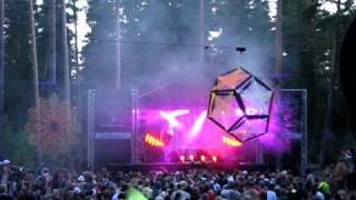 KONEMETSÄ 2009 - Orkidea LIVE