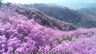 [가사] 진달래 꽃 - 마야