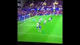 Steven Naismith Goal Everton vs Chelsea 1-0 HD