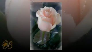 "Nana Mouskouri ""The White Rose of Athens"" (wyk. Bożena BAJA)"