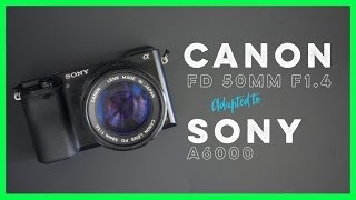 Canon FD 50mm f1.4 Adapted to the Sony A6000