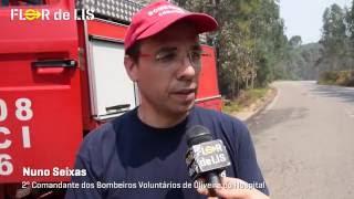 Escuteiros apoiam bombeiros no combate aos incêndios   Flor de Lis