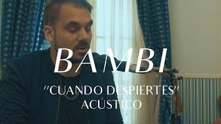Bambi - Cuando Despiertes (CMTV Acústico)