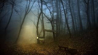 Dark Waltz Music - Darkwell