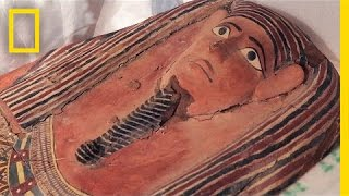 Stolen 2,600-Year-Old Sarcophagus, Other Artifacts Return to Egypt   National Geographic
