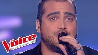 The Voice 2013   Thomas Vaccari - I Believe I Can Fly (R. Kelly)   Prime 1