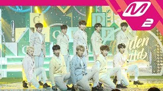 [MPD직캠] 골든차일드 직캠 4K '너라고(It's U)' (Golden Child FanCam) | @MCOUNTDOWN_2018.2.1