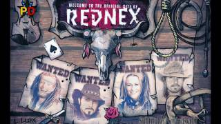 Rednex: cotton eye Joe (subtitulado español)
