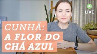 Chá com a Helena: Conheça o Chá Azul da Clitoria Ternatea ou Cunhã ?