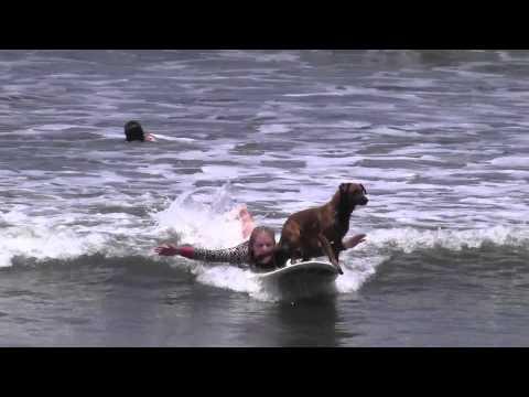 Jackie George Surfs With Amigas